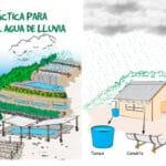 Guía Practica para Cosechar Agua de Lluvia - Cultivando Flores