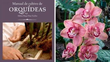 Guía Practica para Cultivar Orquídeas PDF - Cultivando Flores