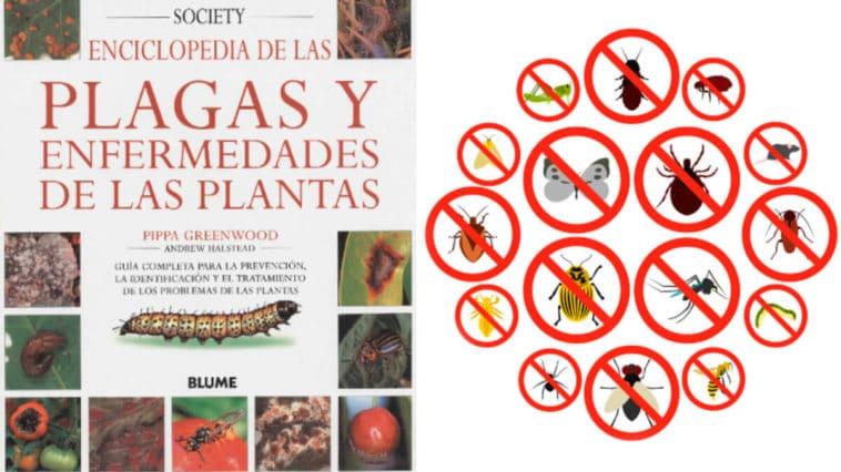 Libro para Identificar Plagas y Enfermedades de Plantas PDF - Cultivando Flores