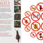 Libro para Identificar Plagas y Enfermedades de Plantas Part.2 en PDF - Cultivando Flores