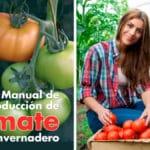 Guía Practica para Cultivar Tomate PDF - Cultivando Flores