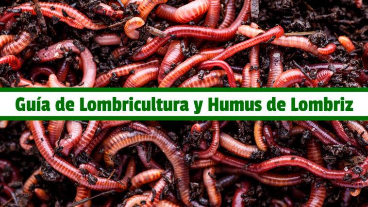 Guía de Lombricultura y Humus de Lombriz PDF - Cultivando Flores