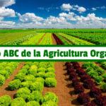 Libro ABC de la Agricultura Orgánica PDF - Cultivando Flores