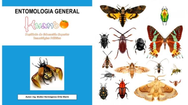 Libro de Entomología General PDF - Cultivando Flores