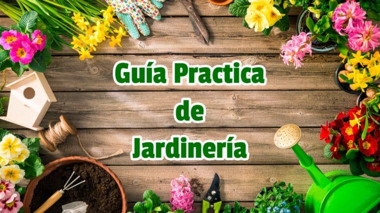 Guía Practica de Jardinería PDF - Cultivando Flores