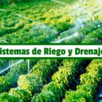Guía de Estudio de Sistemas de Riego y Drenaje Agrícola PDF - Cultivando Flores