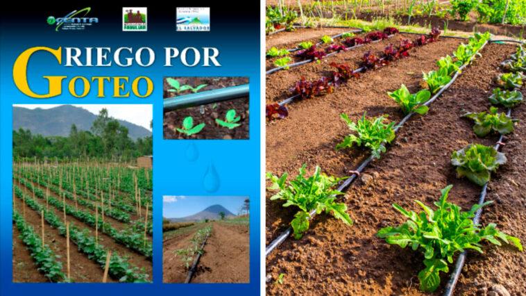 Guía de Sistemas de Riego por Goteo PDF - Cultivando Flores