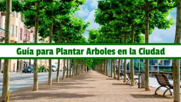 Guía para Plantar Arboles en la Ciudad PDF - Cultivando Flores