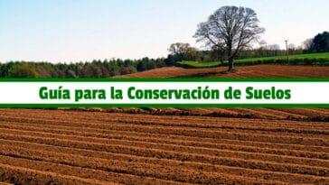 Guía para la Conservación de Suelos PDF - Cultivando Flores